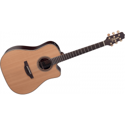 Takamine - DN15C Natural